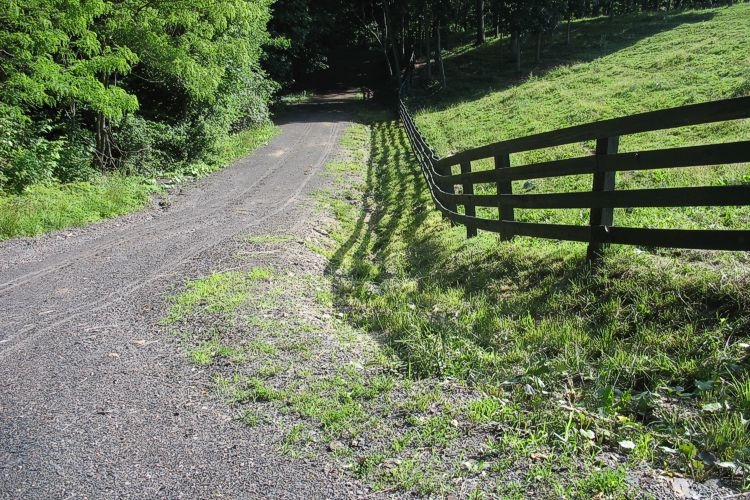 Gravel trail leading towards shadows of forest alongside meadow with black rail fence.
